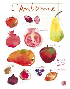 Food art Seasonal fruits fruit print Kitchen by lucileskitchen