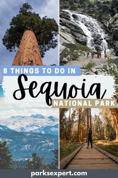 Plan your adventure in the shadows of giants with this list of fun and exciting things to do in Sequoia National Park (written by a local!). | Things to do in Sequoia National Park | What to See in Sequoia National Park | #sequoia #sequoianationalpark #nationalparks #california
