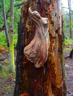 valkyriethais: Woman of The Waves, Driftwood Sculpture
