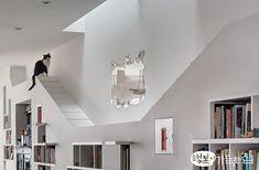 [BY 행복이가득한집] 애서가와 고양이의 행복한 동거사람을 위한 가구와 제품 디자인을 넘어 아예 반려...