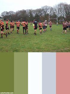 Dscf7130 Color Scheme