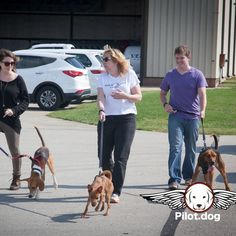 Volunteers walking the passengers after a long flight to Latrobe PA for adoption. Awesome to be able to fly these guys. http://pilot.dog  #aviation #pilotnpaws #instaaviation #instagramaviation #dog #dogrescue #pilotdog #pet #pilot