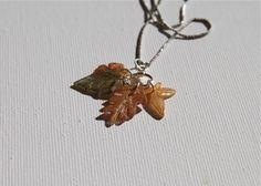 shrik leaves