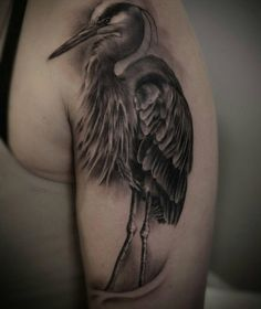 Heron done by @tyetremblay @blackpearltoronto #birds #heron #tattoos #tattoo #toronto #danforth #bng - ladyluck13xx