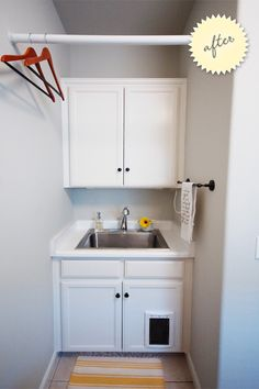 Cat door in a cabinet for litter box in laundry room...I totally am going to do this when we have our own house.