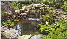 Allscape Landscape Water Features Call for more information. Pond and Waterfall Repair and Installation, Fountains, Aerating Outdoor Ponds, Ponds Backyard, Outdoor Gardens, Garden Ponds, Backyard Waterfalls, Outdoor Fountains, Koi Ponds, Outdoor Fire, Backyard Patio