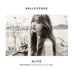 Alice Hello Venus