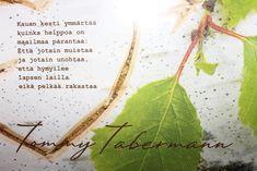 Kuvahaun tulos: tommy tabermannin kauneimmat runot