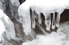 Winter, frost ❄❄⛄