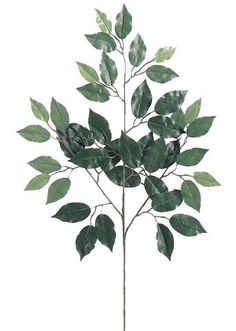 "Artificial Deluxe Ficus Leaf Branch - 23"" Tall"