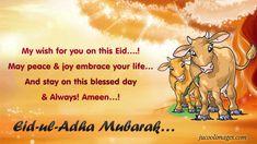 Happy eid mubarak wishes for friends happy eid mubarak wishes 2016 eid ul adha 2018 usa eid mubarak cards eid cards printable eid ul adha cards eid m4hsunfo