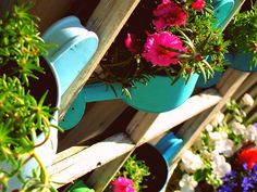 Watering Can flower pots
