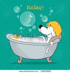 The dog takes a relaxing bath. Positive motivating card. Vector illustration of a cartoon dog.