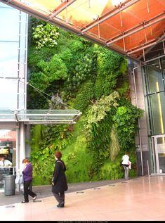 Vegetal wall by Patrick Blanc Green Architecture, Landscape Architecture, Landscape Design, Garden Design, Vertikal Garden, Vertical Green Wall, Artificial Green Wall, Vertical Vegetable Gardens, Green Facade
