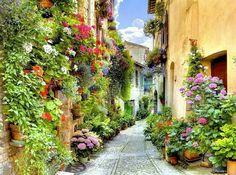 Perugia   Italia
