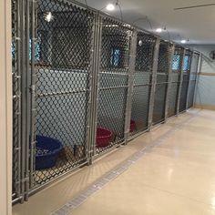 Shop: Modular Kennels Installation Pictures from our Modular Kennels. Dog Kennel Outside, Outside Dogs, Dog Boarding Kennels, Dog Kennels, Commercial Dog Kennel Ideas, Shelter Dogs, Animal Shelter, Building A Dog Kennel, Dog Kennel Designs