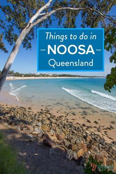 Things to do in Noosa, Queensland, Australia A great guide for anyone planning to visit Noosa in Queensland.