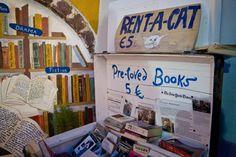 """Atlantis Bookstore """"rent-a-cat"""" service, Santorini, Greece"""