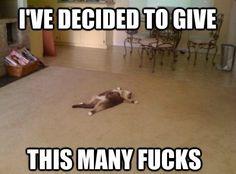Dear Thursday:
