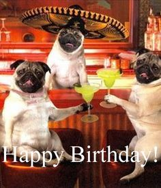 Happy Birthday! for more funny b'day quotes and birthday wishes 2016 visit- quoteswishes.in