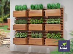 The Vertical Vegetable Garden Panel from Olilo is an excellent opportunity for you . House Plants Decor, Plant Decor, Indoor Garden, Indoor Plants, Pallet Garden Walls, Wooden Garden Furniture, Vertical Garden Design, Vertical Bar, Decoration Plante