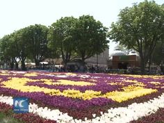 The 11th Tulip Festival has been held in Turkey's Istanbul under the shadow of terrorism with a very few participation of foreign tourists this year.  An Islamic State (IS) suicide bomber blew himself up in the crowd in a winter day of January killing 12 German tourists.