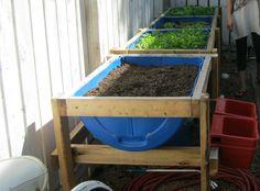 1/2 barrel rain drum raised garden bed