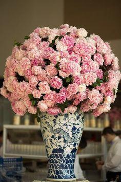 Carnations?