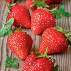 Kto by nemal rád čerstvé jahody!    Casprezeny.sk