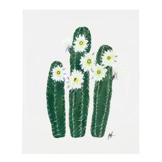 "Part VI of a six part flowering cacti series. An art print of an original illustration by Patricia Shen. - 8"" x 10"" - Printed full color on heavyweight cover paper"