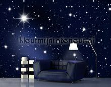 Stars fotobehang