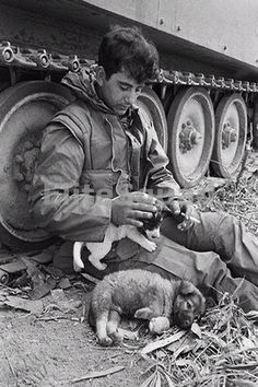 $4.95 - Vietnam War Photo Member Of A Troop 1St Cav 23Rd Infantry Whit Dogs 537 #ebay #Collectibles