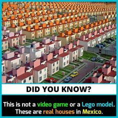 Wow Facts, Real Facts, Weird Facts, Funny Illusions, Cool Illusions, Interesting Science Facts, Interesting Facts About World, Unbelievable Facts, Amazing Facts