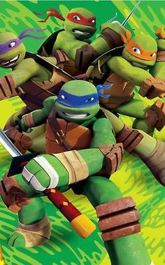 Get to know the turtles!