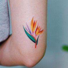 Top 70 Cute Tattoo Design Ideas For Girls Girl Arm Tattoos, Feather Tattoos, Forearm Tattoos, Cute Tattoos, Beautiful Tattoos, Body Art Tattoos, Tribal Tattoos, Small Tattoos, Tattoo Art
