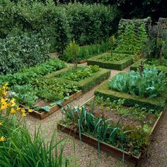 Medieval-style potager | Flickr - Photo Sharing!