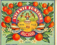 Vicente Fontana - Alcira