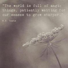 """The world is full of magic things, patiently waiting for our senses to grow sharper. Yeats A photograph of Yeats Quotes, Poetry Quotes, Me Quotes, Wisdom Quotes, Yeats Poems, William Butler Yeats, Magic Quotes, Quotes About Magic, Frases"