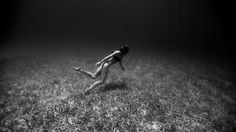 Hold Your Breath, These Freediving Photos Are Insane