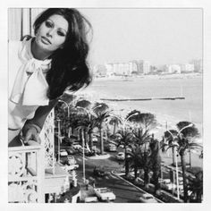 Sophia Loren, In the Spirit of Cannes. Assouline.