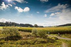 Ideales Bikewetter auf unserer Biketour #Baldeggersee #Herzschlaufe Vineyard, Mountains, Nature, Travel, Outdoor, Tours, Vine Yard, Outdoors, Naturaleza