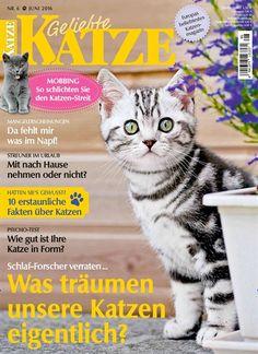 MIAU - unser Code für den heutigen #epaperMonday. Denn heute könnt ihr die aktuelle Ausgabe von Geliebte Katze gratis laden & lesen    Gleich Gutschein einlösen: https://www.united-kiosk.de/epaperMonday/