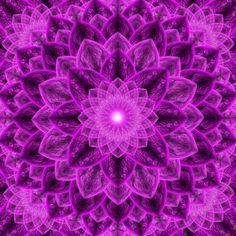 Royal Flower Mandala