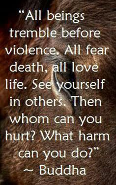 All beings tremble before violence. All fear death, all love life. See yourself in others. Then whom can you hurt? What harm can you do? ~Buddha