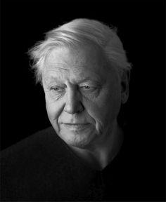 We need to listen to David Attenborough Beautiful Images, Beautiful Men, Beautiful People, Good Looking Older Men, Big Cat Tattoo, David Attenborough, Famous Art, Ap Art, Make Me Smile