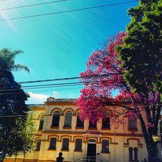 Museu Paulo Setúbal-  Tatuí-SP Brasil