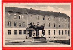 AK Gussew - Gumbinnen - Hotel Kaiserhof und Elch 1942   Sammeln & Seltenes, Ansichtskarten, Ehemalige dt. Gebiete   eBay!