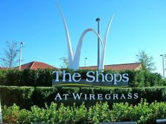 wiregrass mall - Google Search