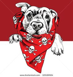 Find Portrait Dog Labrador Red Neckerchief Image stock images in HD and millions of other royalty-free stock photos, illustrations and vectors in the Shutterstock collection. Logo Pirate, Fabric Painting, Painting & Drawing, Front Shoulder Tattoos, Labrador, Hipster Art, Image Fun, Colorful Paintings, Portfolio