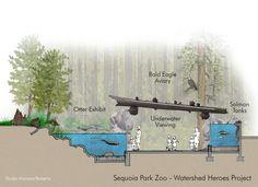 Sequoia Park Zoo Watershed Heroes Section - Studio Hanson Roberts